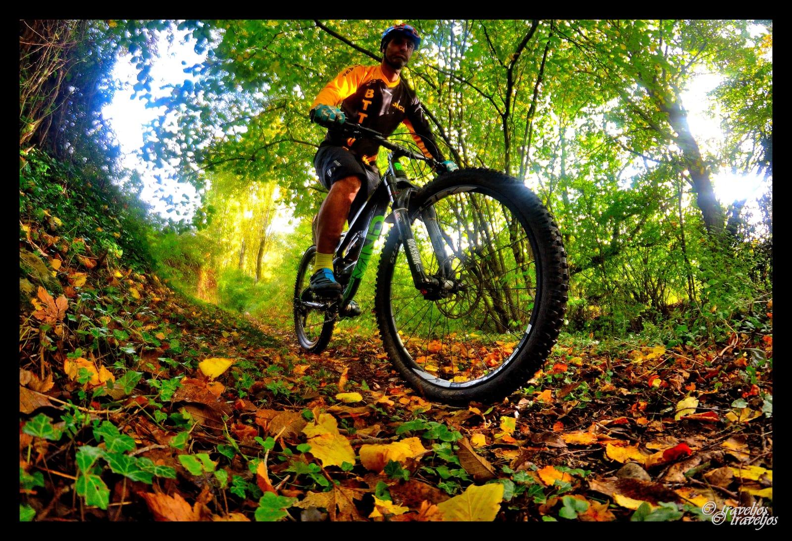 Ciclista en otoño